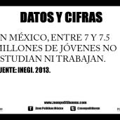 Ninis en México
