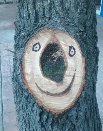 Sonrisa de la raíz